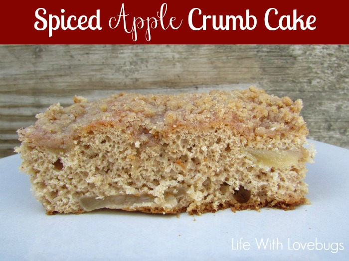 Spiced Apple Crumb Cake 0 Recipe