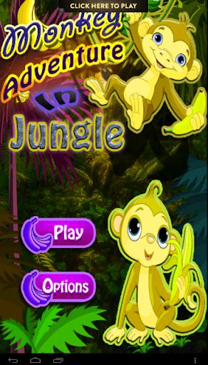 Monkey Adventure in jungle