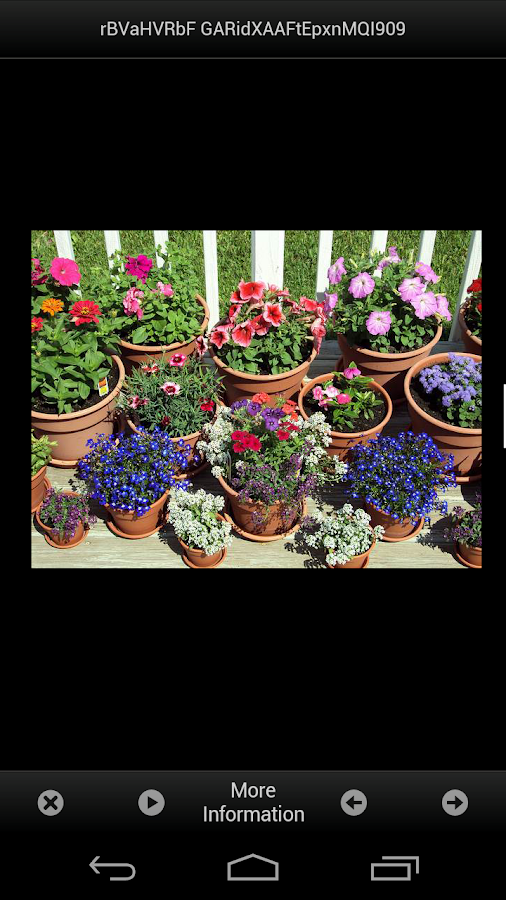 flower garden design ideas android apps on google play