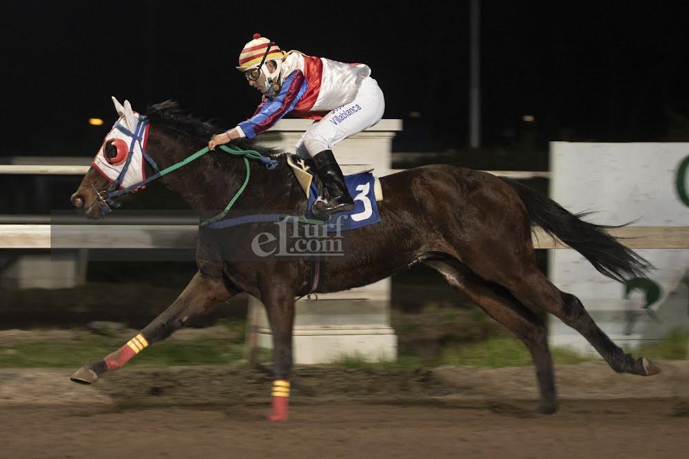 El Gran Maguro (Monthir) se lleva  Handicap (1000m-Arena-CHS). - Staff ElTurf.com