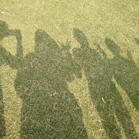Friend's shadow by Aarti Chaudhary - Nature Up Close Other Natural Objects