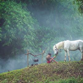 Boy, Horse,  by Sulistyo Aji - Uncategorized All Uncategorized ( horse, nikon, men, boys, model, man, tokina, indonesia, boy, picture )