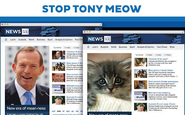 Stop Tony Meow