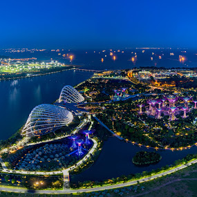The Garden of Singapore by Binoy Uthup - City,  Street & Park  Night ( mbs skypark, hdr, mbs skypark view, blue hour, aerial, 56th floor view, cityscape, architecture, landscape, hdr photography, singapore, nightscape, city, urban, night photography, nature, blue, mbs, gardens by the bay, night shot )