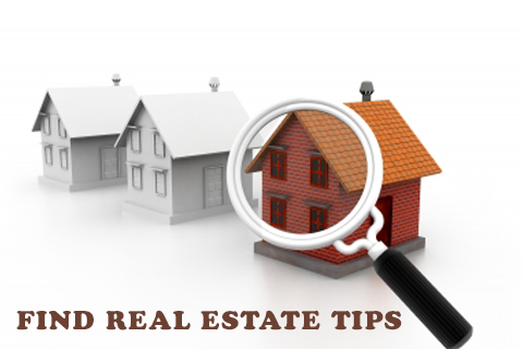 Find Real Estate Zillow Tips