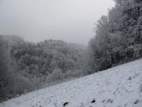 Photo: 15.Pieninki Skrzydlańskie. Zima ma swój urok.