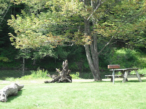 Photo: Picnic area at Little River State Park