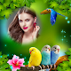 Download Love Birds Photo Frame For PC Windows and Mac