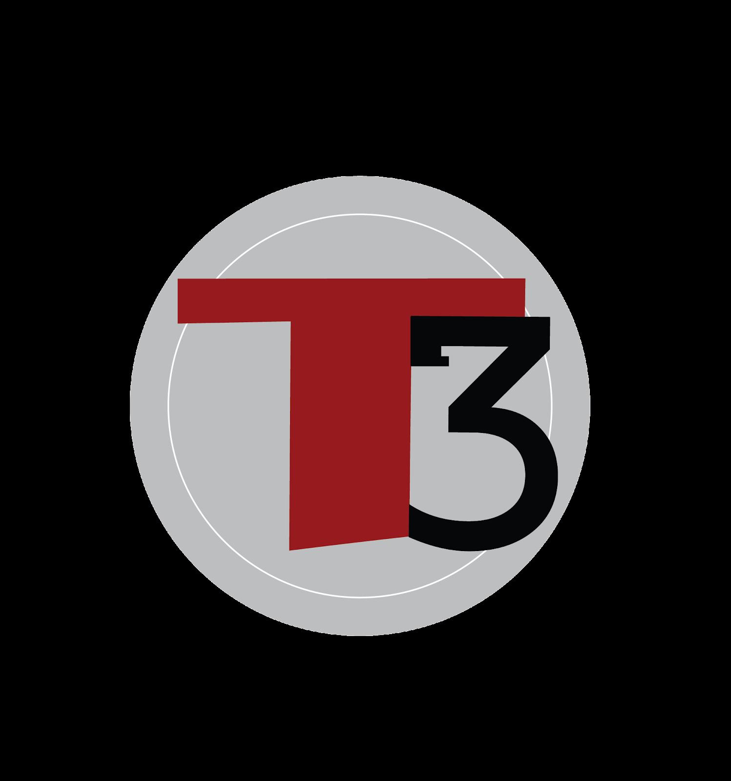T3 Art Image.png