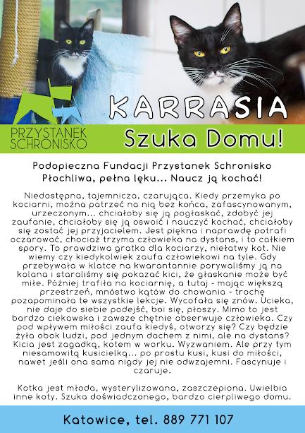 Firmówka Karraska