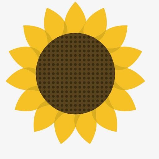 Boys in sunflowers