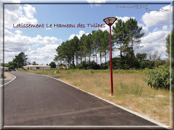 terrain à Saint-Avit (40)