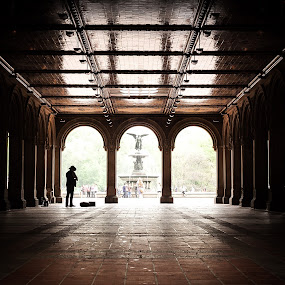Echoes of Music by Marc Brian Queyquep - City,  Street & Park  City Parks ( music, bethesda terrace, guitar man, central park, shadows )
