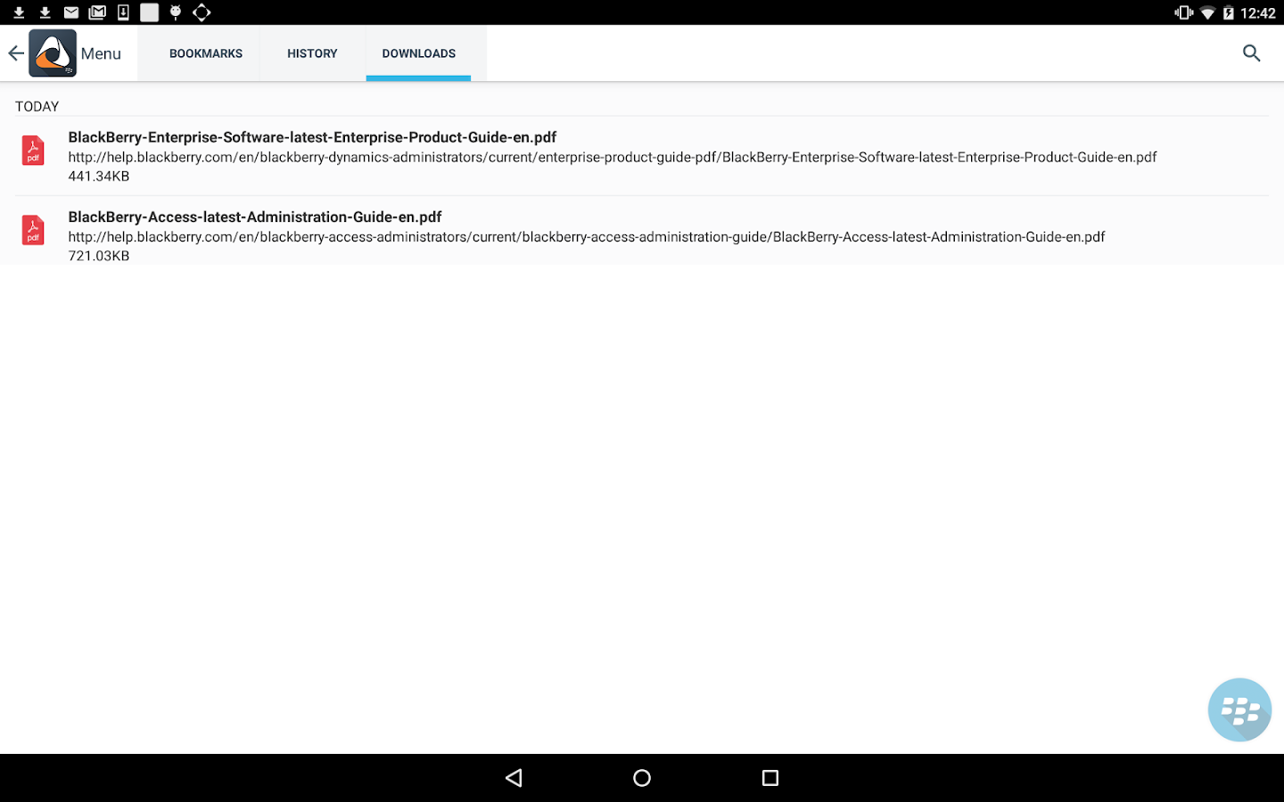 BlackBerry Access- screenshot