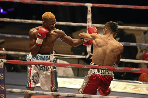 Mzuvukile Magwaca in action against Jose Gonzalez in a WBA International title fight.