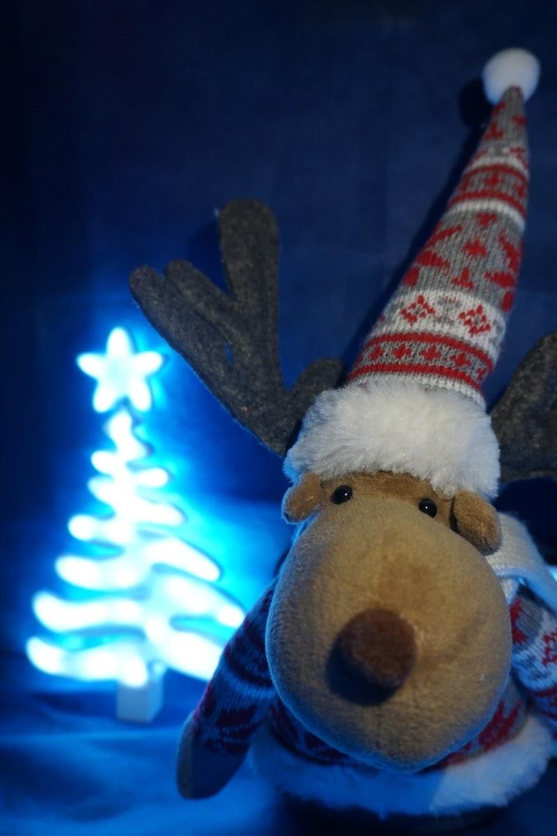 Renna natalizia di Lobo77