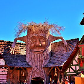 Tree House-hr by Jim Johnston - City,  Street & Park  Markets & Shops