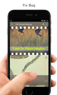Download Canto De Pájaro Completo Nuevo For PC Windows and Mac apk screenshot 3
