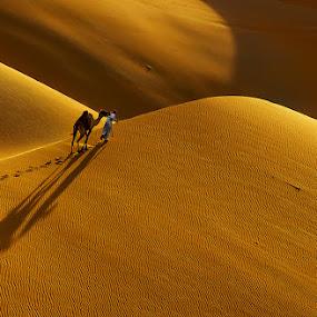 The Liwa Desert by Adeeb Alani - People Street & Candids ( #nikon #canon #nature #desert )