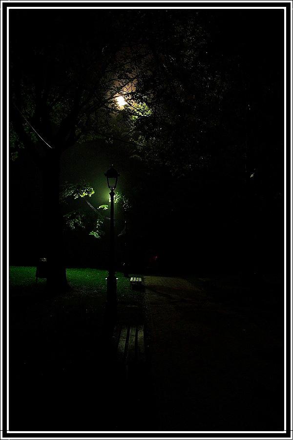 Di notte...il silenzio... di farmacista78