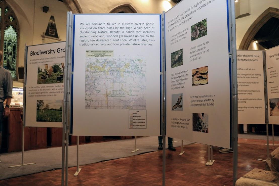 Keeping Tenterden Green - Tenterden Neighbourhood Plan