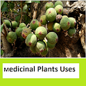 Medicinal plants Images n Uses icon