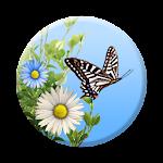 Butterfly 1.1.10