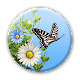 Butterfly Download on Windows