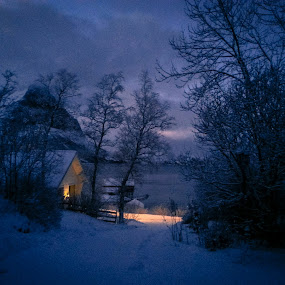 Blue winter by Elisabeth Sjåvik Monsen - Instagram & Mobile Android ( winter, cold, blue, january, snow, north, darkness, norway,  )