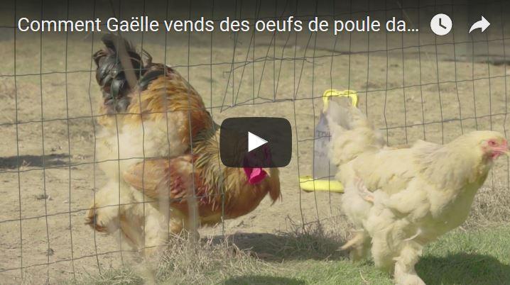 Comment Gaëlle vends des oeufs de poule dans le monde entier avec... son blog