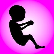 My Pregnancy Info Widget