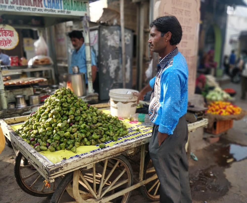 singhada+cart+pushkar+market+rajasthan