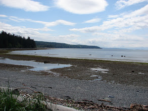 Photo: Mouat Bay from the beach at Harwood Point.