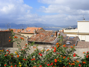 Photo: Another view over Cannes' rooftops towards the bay.