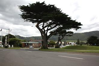 Photo: Year 2 Day 145 -  Town of Apollo Bay