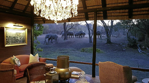 Mammoth relaxation: Camp Ndlovu's five luxurious suites provide views of bushveld and wildlife, and even private pools from which to watch game. Picture: SUPPLIED