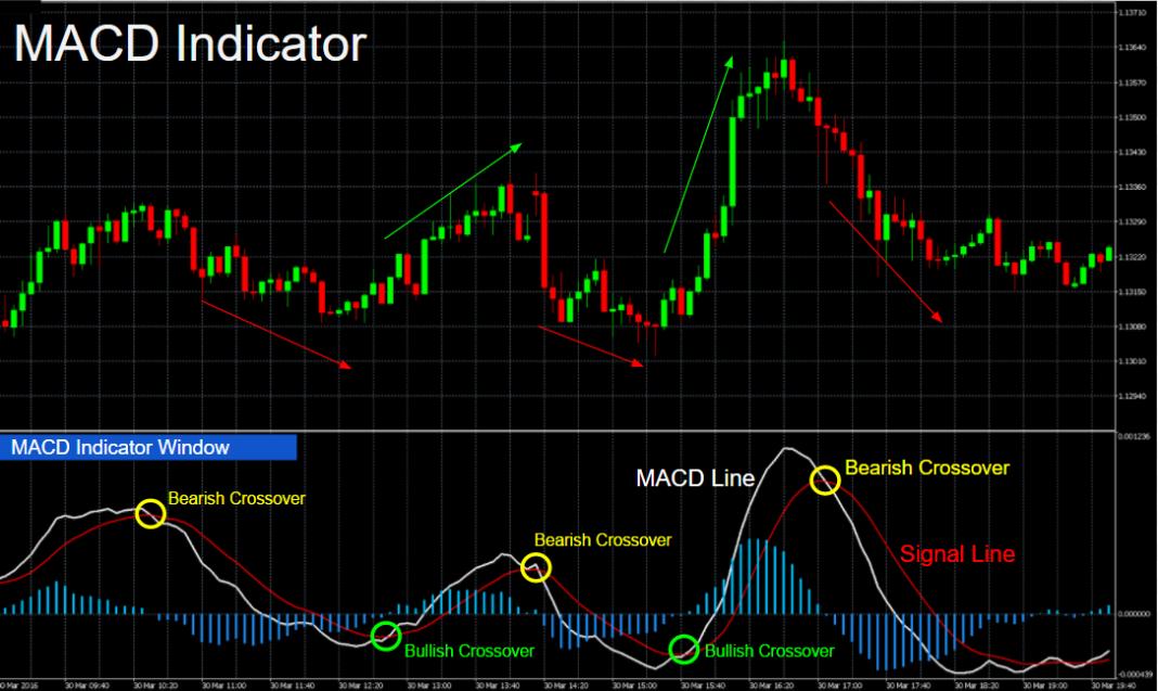 Guía de indicadores de Forex para principiantes