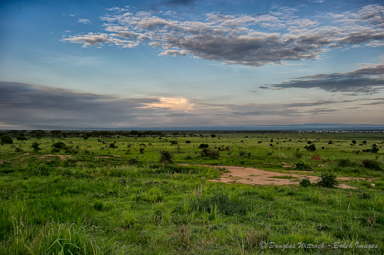 Photo: African sunset, with some nice cloud detail.