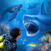 Shark VR juego de tiburones para VR