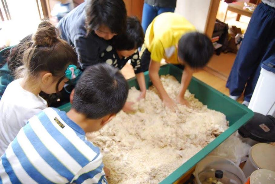 大豆を全部潰したら、混ぜて置いた塩と麹を均一に播いて、大豆とよくもみ合わせます。