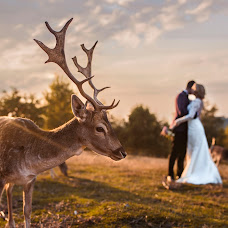 Fotograful de nuntă Pop Adrian (popadrian). Fotografia din 03.10.2016