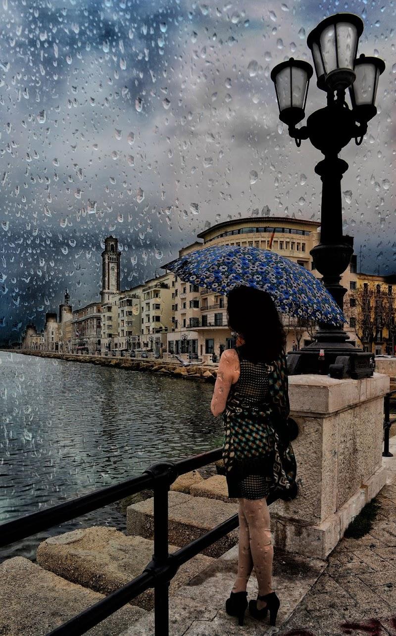 Affacciarsi sotto la pioggia di Diana Cimino Cocco