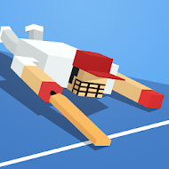 One More Run: Cricket 2015