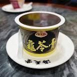 Hoi Tin Tong serves the bizarre Chinese Turtle Jelly in Hong Kong, , Hong Kong SAR