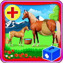 Horse Pregnancy Doctor Surgery icon