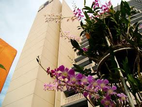 Photo: 017-Le Marina Mandarin à Singapour