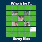 Guess STRAY KIDS Member Mod