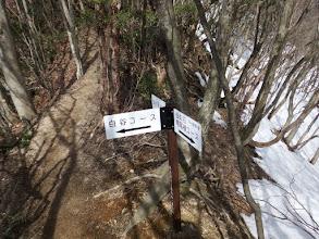 白谷コース分岐