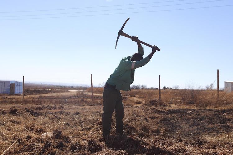 Phumlane Tshabalala prepares the ground for a new stand on Tuesday at Narens Farm near Lenasia south, Johannesburg.