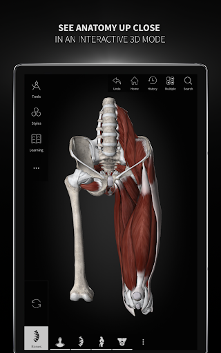 Anatomyka - Interactive 3D Human Anatomy 1.1.1 screenshots 15